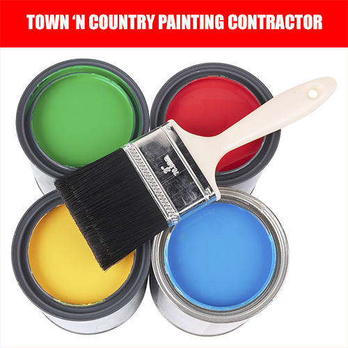 painter town 'n country florida